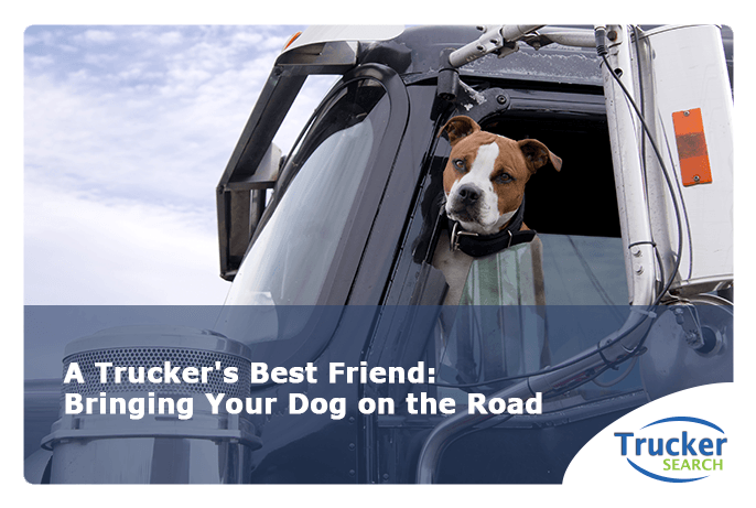 A-Trucker's-Best-Friend-Bringing-Your-Dog-on-the-Road