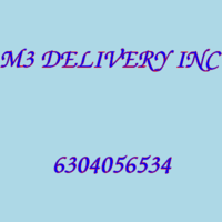M3 DELIVERY INC